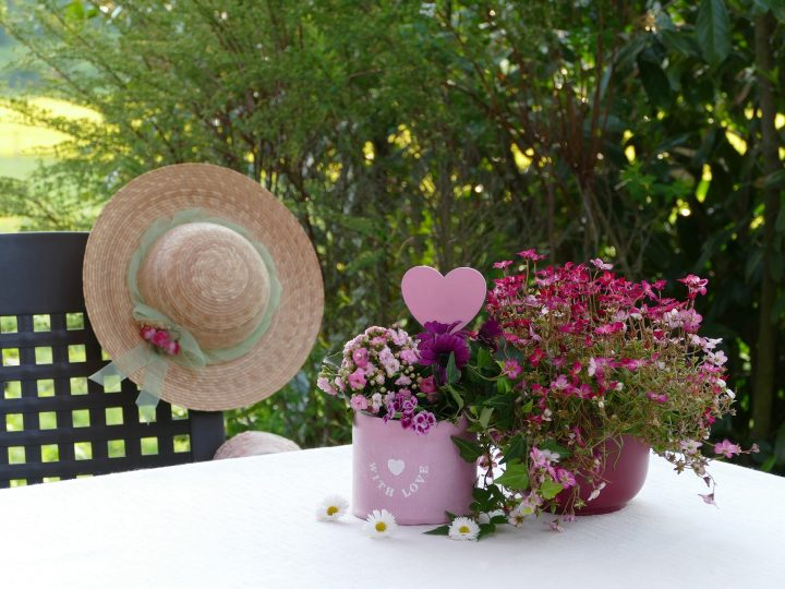 Mother's Day Festivities on a Budget